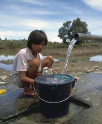As Mudanças Climáticas e um novo cenário para as crianças