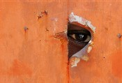The Darfur Crisis: An African Apocalypse