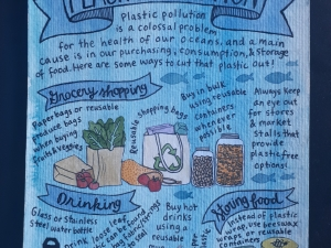 Plastic Pollution Poster!