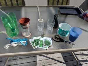 Aquaponics project