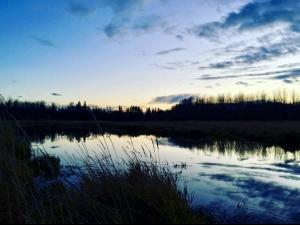 Sturgeon River, St. Albert, Alberta