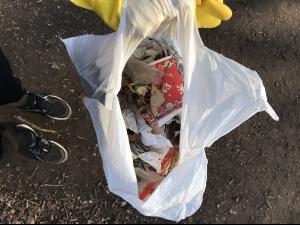 Urban Trail Clean Ups During COVID-19
