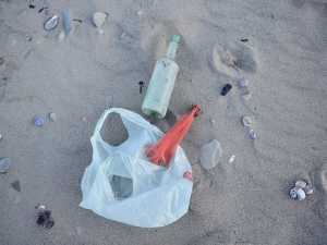 Socially-Distanced Beach Cleanup