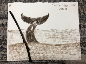 Willow charcoal drawing - Whale Tail