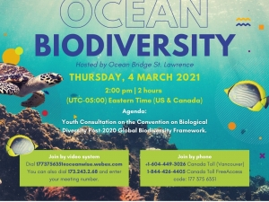 Youth Consultation on Ocean Biodiversity